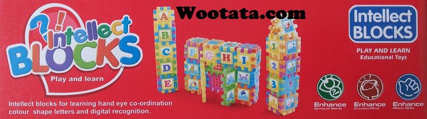 mainan-blok-edukatif-anak-terpopuler-intellect-blocks